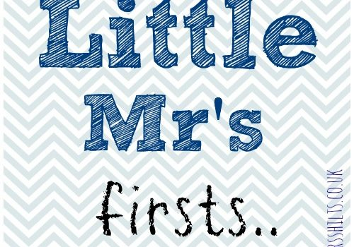 little mr's firsts