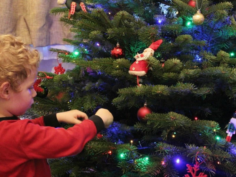 child decorating real christmas tree
