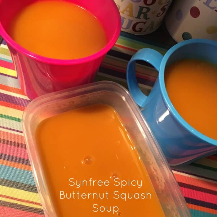 Synfree Spicy Butternut Squash Soup