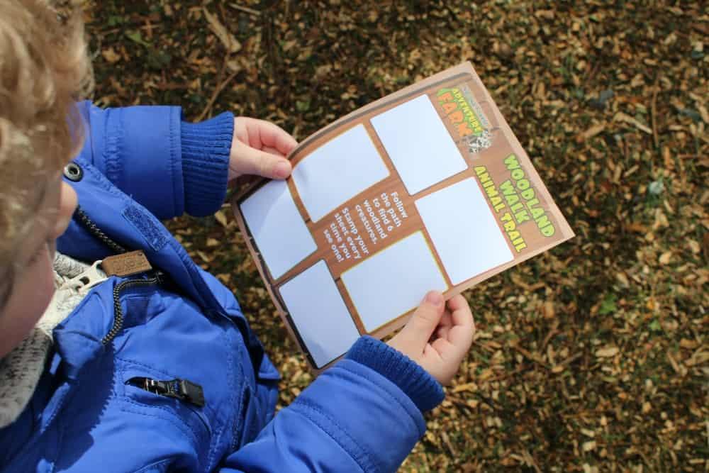 National Forest Adventure Farm - Woodland Walk Animal Trail