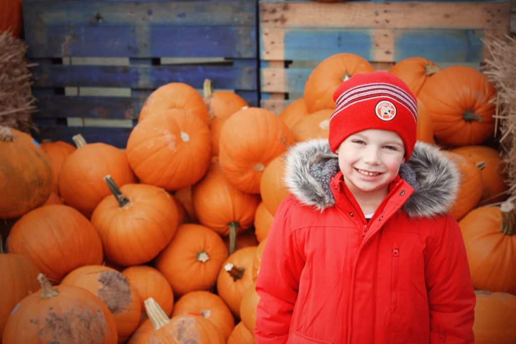Pumpkin Essington Farm