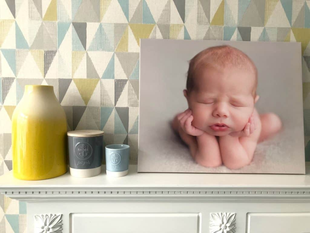 Canvas Champ Newborn Photo Interiors