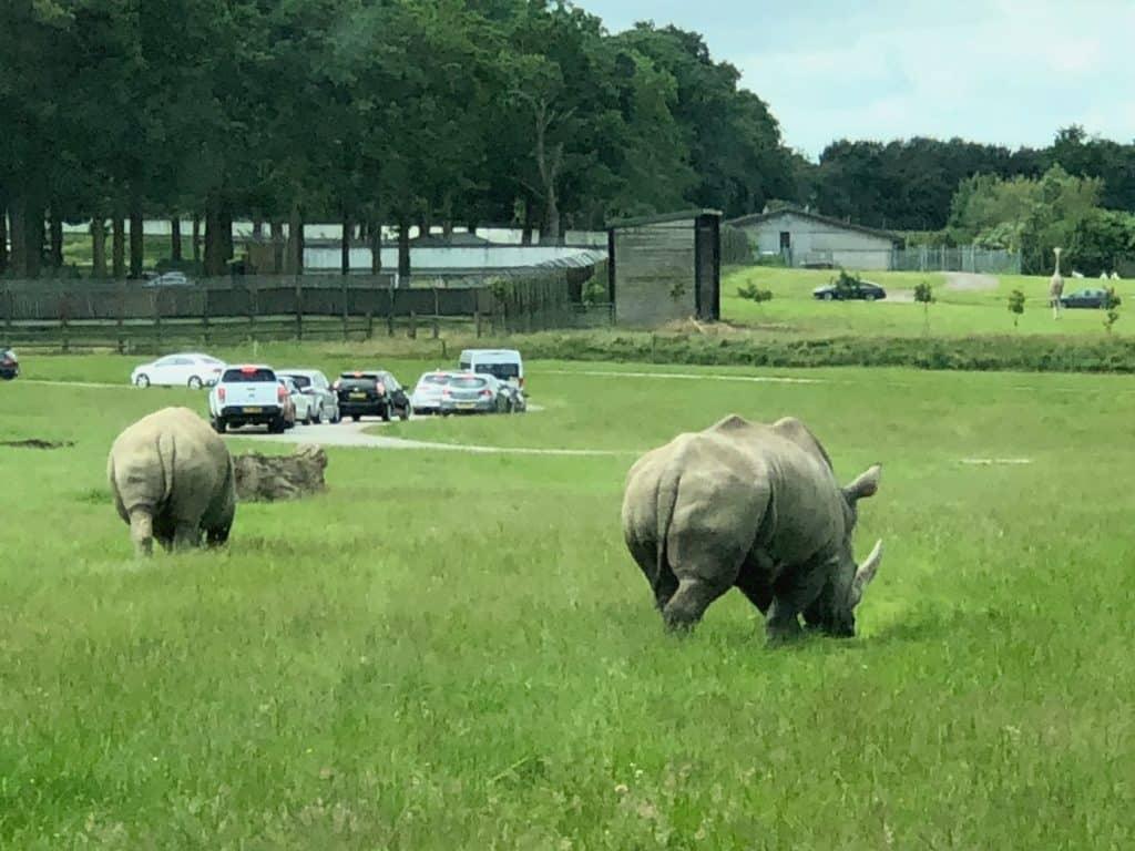 Yazoo ShakeTesters Woburn Safari Park