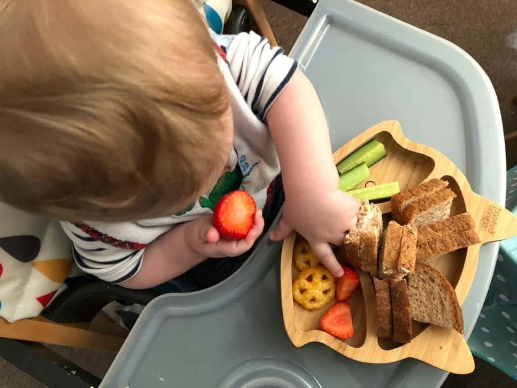 Freddie lunch
