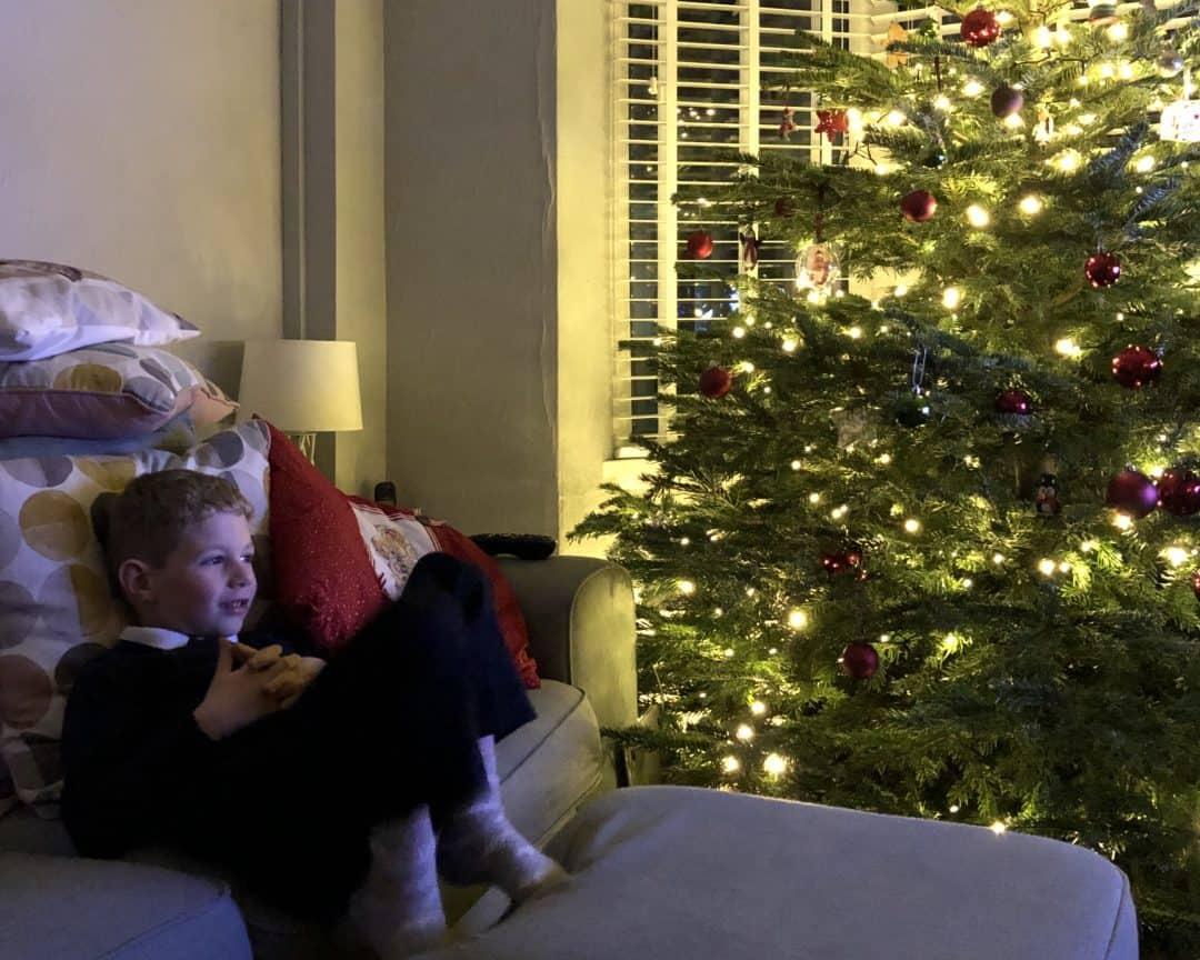 Olly Christmas Tree