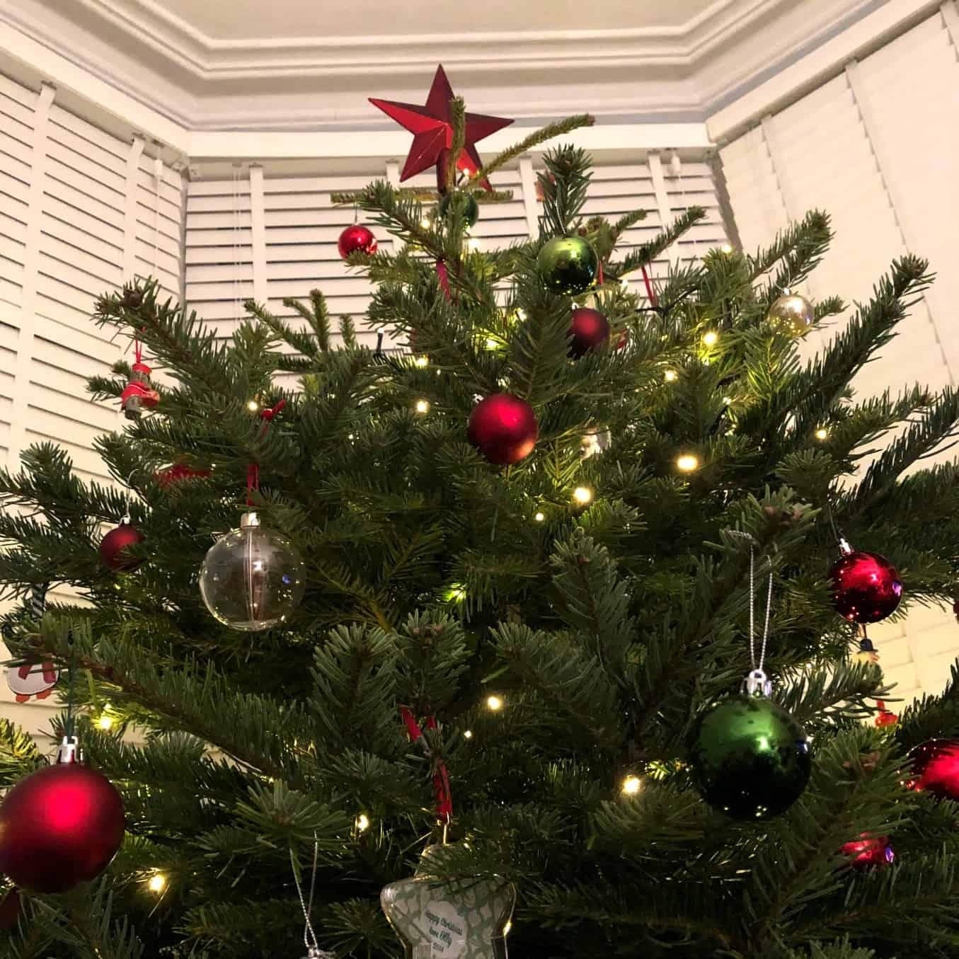 Pines and Needles Christmas Tree 2018
