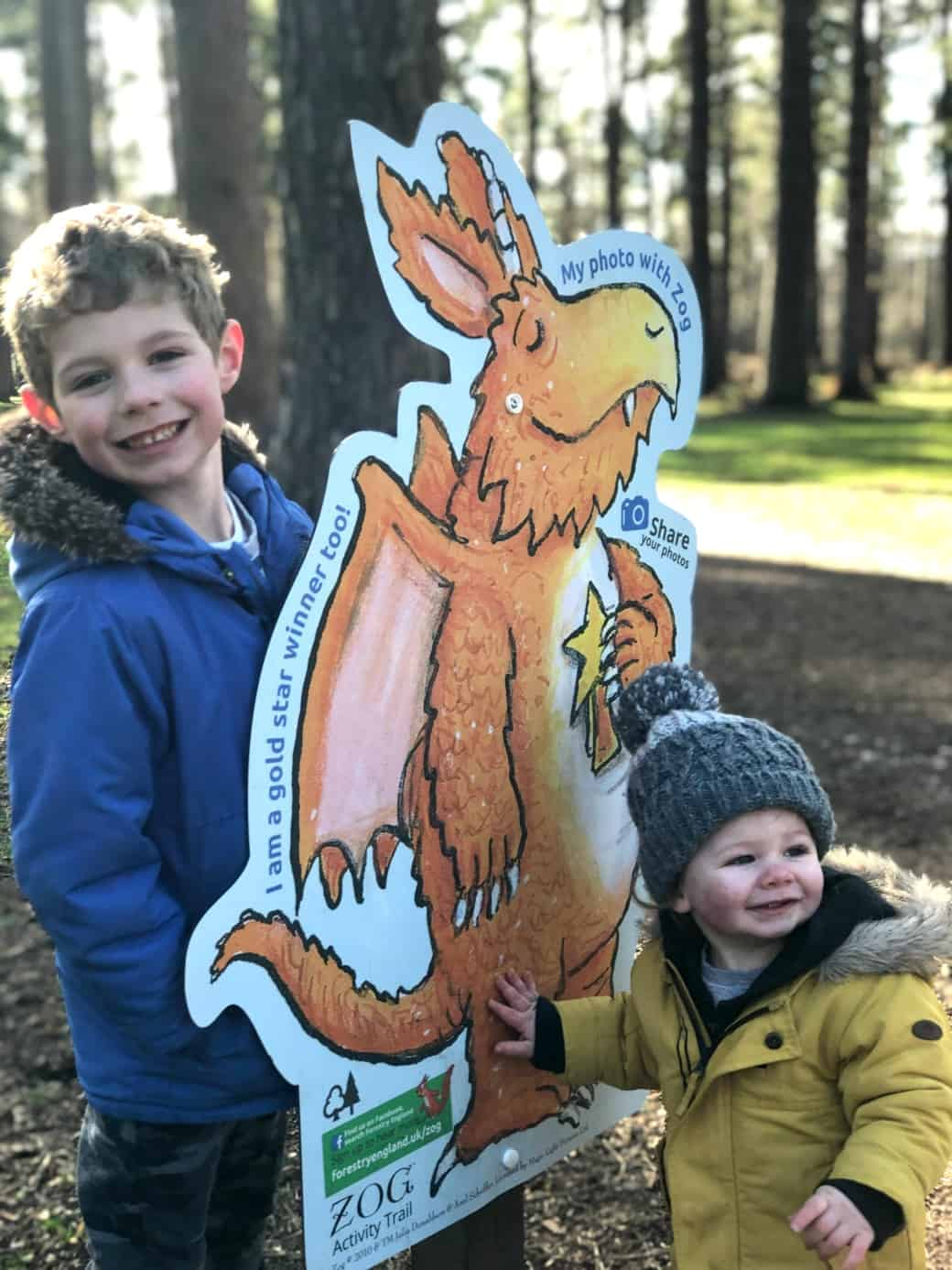 Zog Trail Cannock Chase