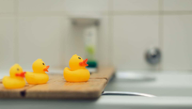 bathroom duck